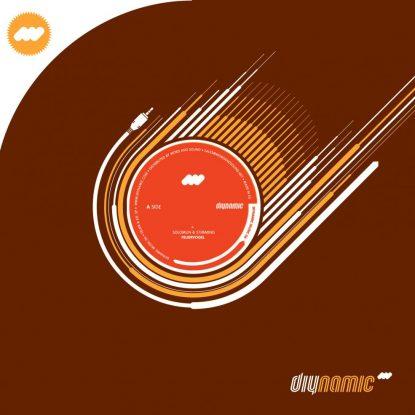 Cover DIY006 - Feuer&Eis EP